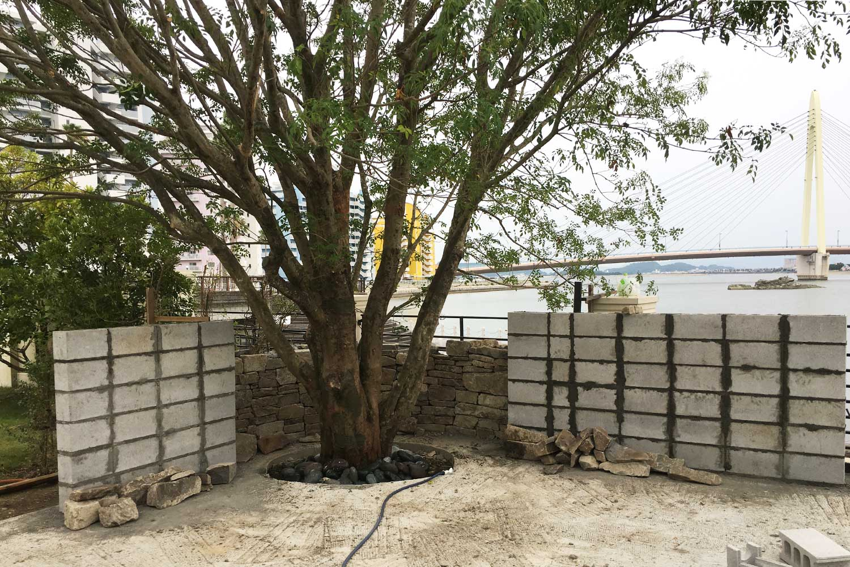 case-bayside-bigtree-9